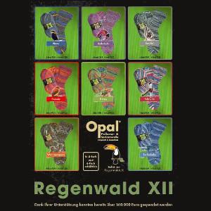 regenwaldxii